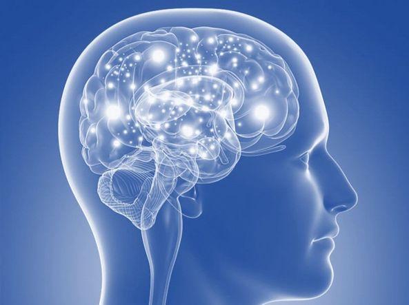 Scoperta la proteina che può bloccare l'insorgenza del Parkinson